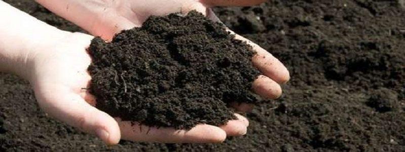 مهمترین آثار فعالیتهای انسان بر خاک