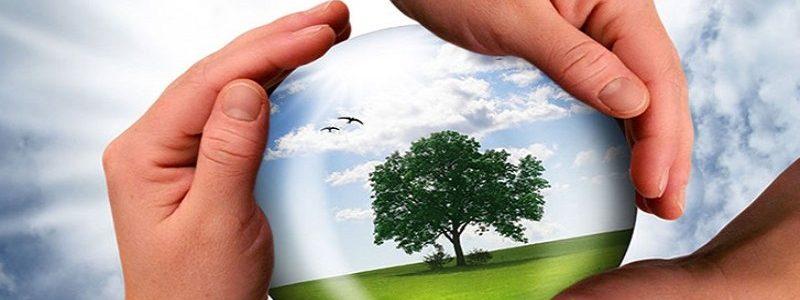 مشاوره محیط زیستی