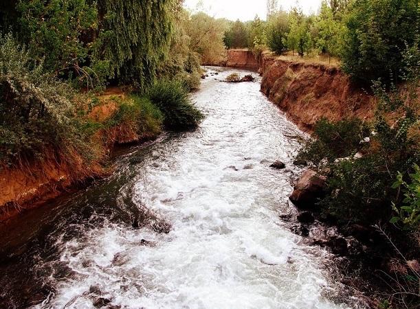انجام پروژه های مرتبط با پایش و مدریت آب و پساب