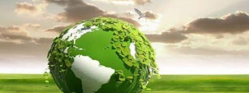 اهمیت طرح توجیهی زیست محیطی